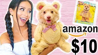 MY DOG TRIES ON HALLOWEEN COSTUMES!