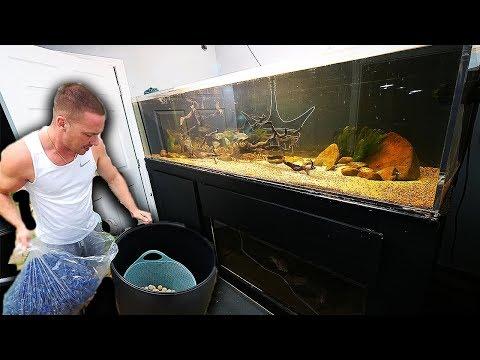Large DIY aquarium filter for $50 | The King of DIY