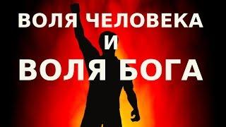 Воля человеческая «Да будет воля Твоя» (Мф. 6:10). Православный взгляд