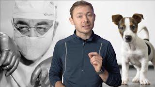 7 Sære Og Grumme Eksperimenter På Mennesker Og Dyr