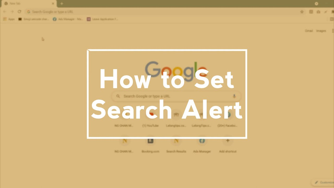 How to set Search Alert