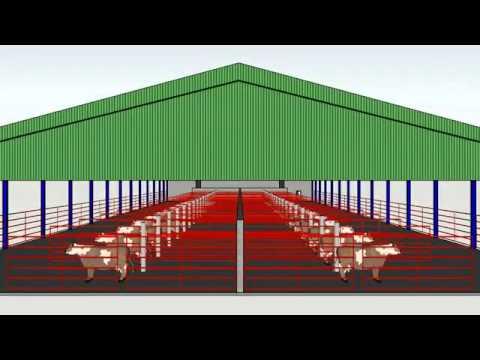 Broiler & Animal Shed