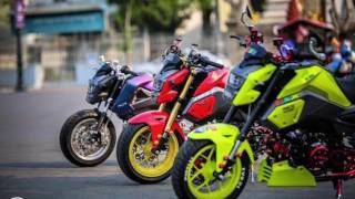 HONDA MSX 125 TOP SPEED MODIFIED BIKES / HONDA CLUB FAMILY STYLE