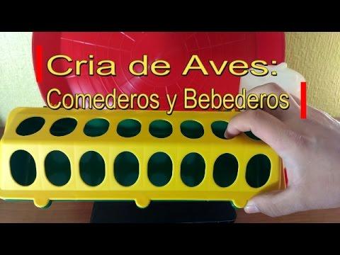 Materiales para cría de Aves: Bebederos y Comederos para Pollitos, Codornices, Palomas…