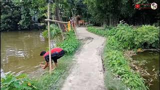 Funny video 2018 pagalworld mirchifun com