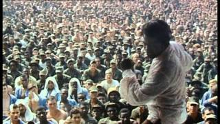 Soul Survivor - The James Brown Story