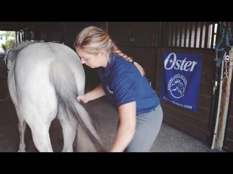 Oster® Linea equino (Jose)