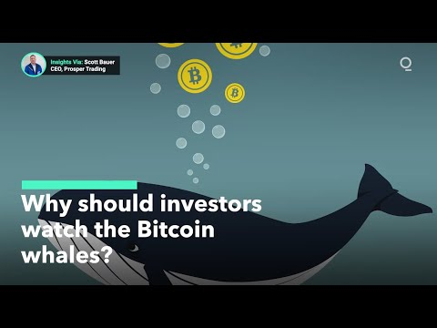 Prekyba bitcoin nepastovumo