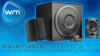 wavemaster MOODY BT 2.1 Bluetooth Speaker System Unboxing & First Look!