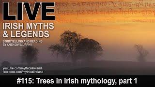 Live Irish Myths episode #115: Trees in Irish myth and folklore, part 1: The Yew Tree