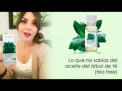 Lo que no sabías del aceite del árbol de té  (tea tree)