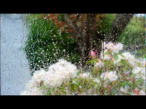 Prelude in D flat Major, Op. 28,15 'Raindrop' (Song) by Frederic Chopin