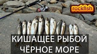 Кренки для рыбалки на черном море