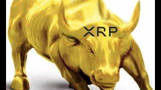 A Golden Bull Is Coming For Ripple XRP