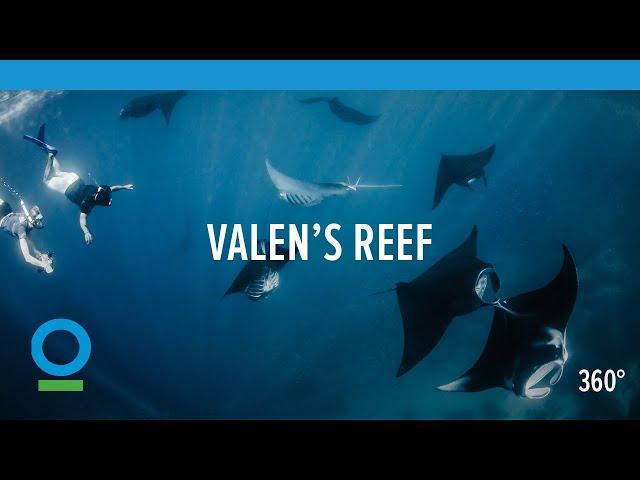 sportourism.id - Valens-Reef-Kisah-Penjaga-Perairan-Kepala-Burung