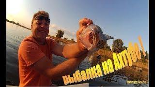 Рыбалка с проживанием и питанием на ахтубе