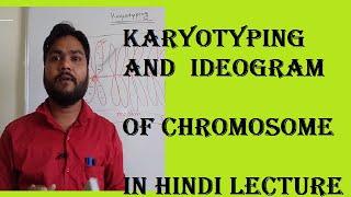 karyotyping and idogram of chromsome #chromosomebanding