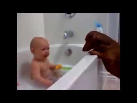 , title : 'Приколы с детьми и животными'