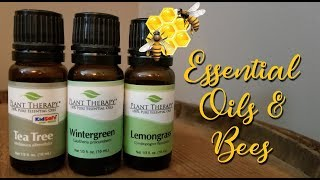 Essential Oils for Feeding Bees in the Fall