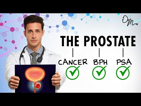 Prostate and inguinal hernia in