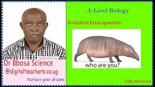 Evolution Essay revision questions