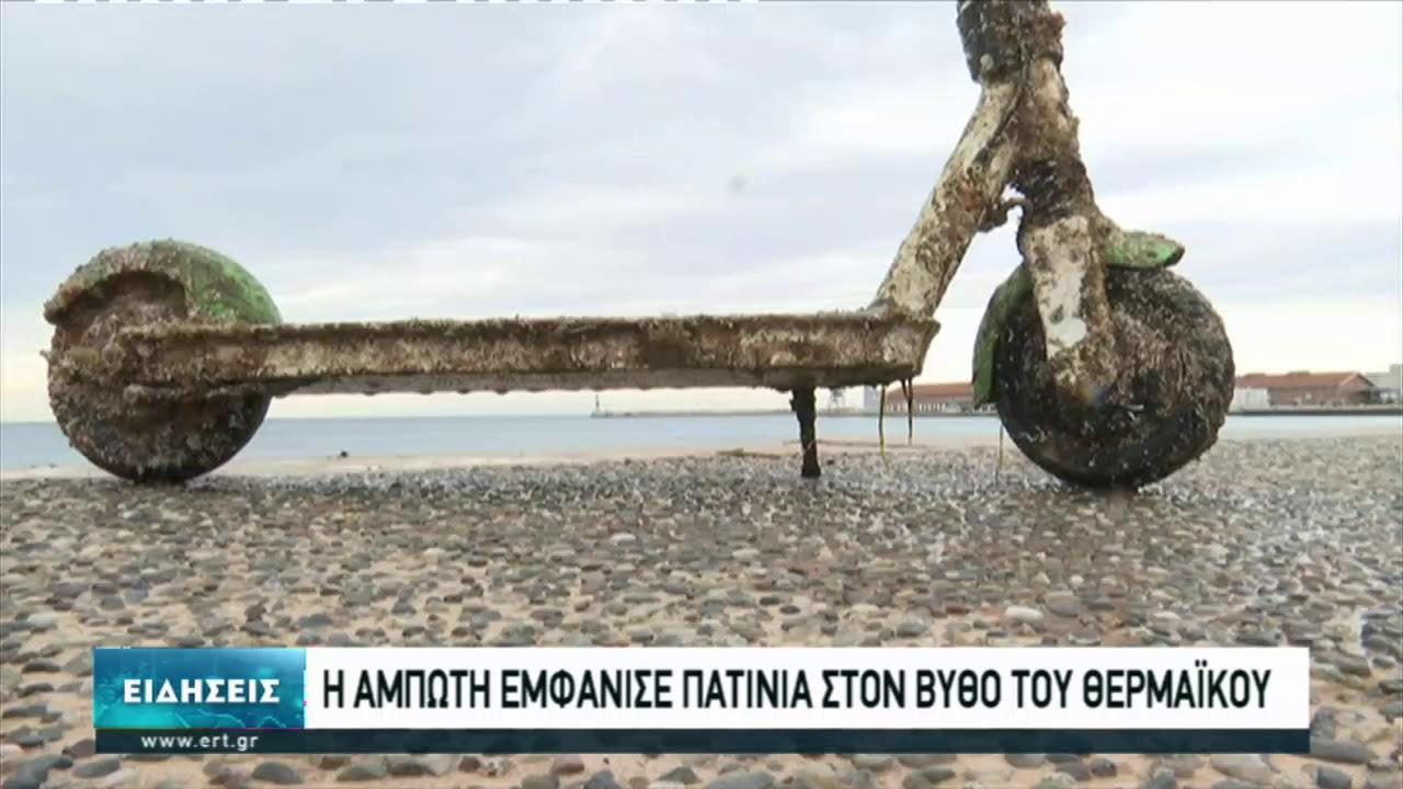 Ψάρεψαν ηλεκτρικά πατίνια από την παραλία της Θεσσαλονίκης | 14/3/2021 | ΕΡΤ
