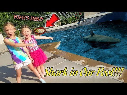 Monster in Our Pool! Shark Attack on Dad Prank!!! (Hidden Eggs NOT Found)