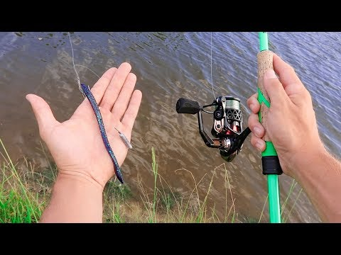 Catch 10x MORE Fish Using A Dropshot (Bass Fishing Tips)
