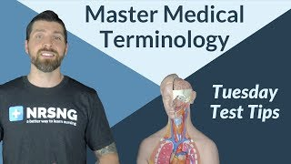 How To Master Medical Terminology - Tuesday Test Tips