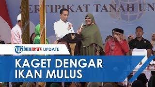 Video Jokowi Terkaget-kaget saat Seorang Ibu Sebut Ikan Mulus, Presiden Sampai Melongo