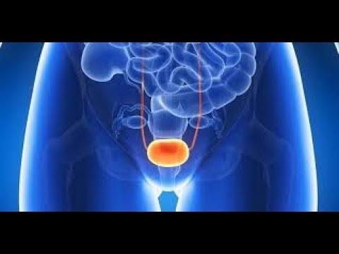 Giardia pregnancy first trimester