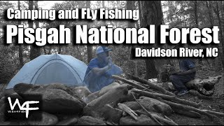 "W4F - Camping and Fly Fishing ""Pisgah National Forest"" Davidson River, NC"