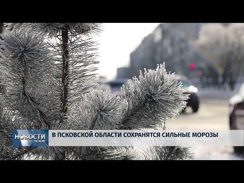 22.01.2019 / Морозы продолжают сковывать область