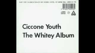 Ciccone Youth - Addicted to Love