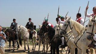 Танец лошади и быка в португальской корриде
