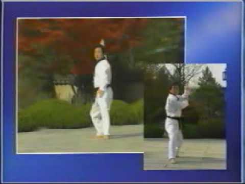 15. Taekwondo Poomsae Cheonkwon (WTF)