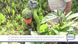 Video del MEDUCA Panamá AXM