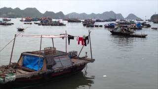 preview picture of video 'Cat Ba Island'