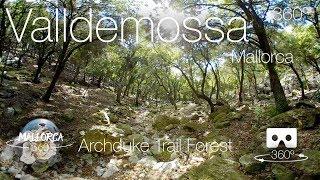 Mallorca 360º Valldemossa Lower Archduke Trail Forest 4K VR