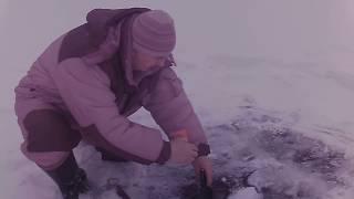Отчеты о рыбалке челябинская область увильды