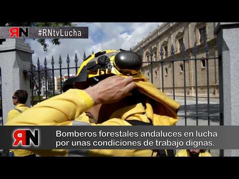 #RNtvLucha20