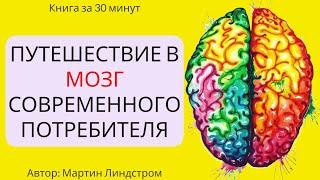 Пересказ и идея книги: Путешествие в мозг потребителя #2