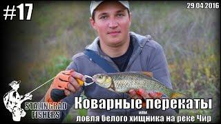 Рыбалка на реке чир ростовская область