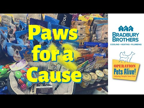 Caring for Our Community - Paws for a Cause (2019)