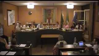 preview picture of video 'Consiglio Comunale di Cusano Milanino (MI) 15 Luglio 2013'
