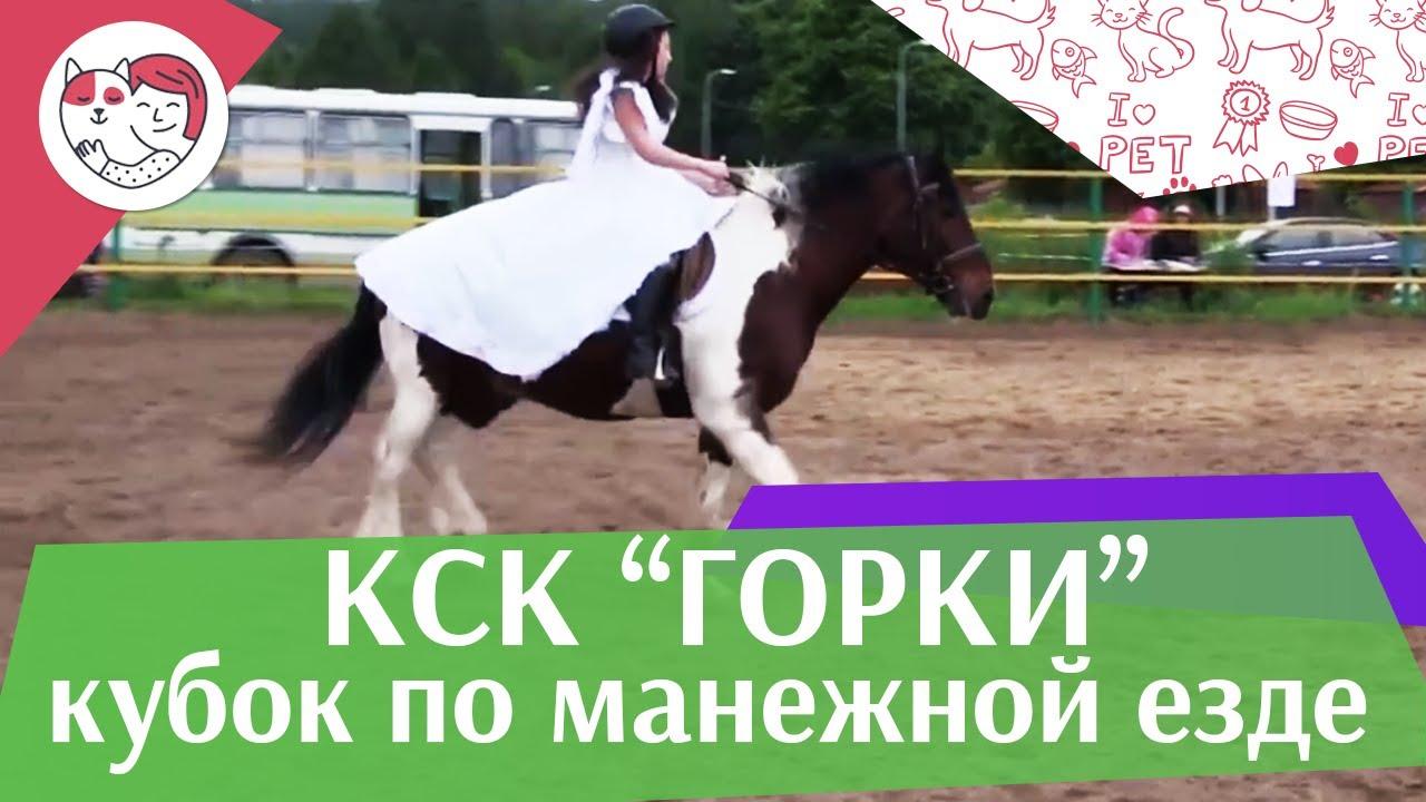 Летний кубок КСК Горки по манежной езде КЮР часть 17 на ilikepet