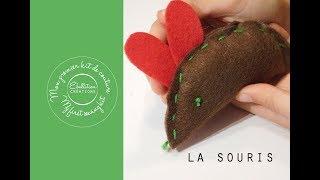 Comment Coudre Une Souris, Premier Kit De Couture, Sewing Kit