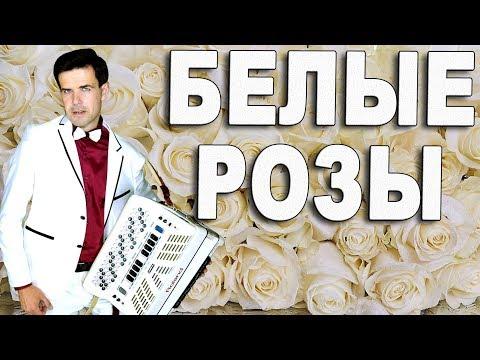 🔥ПЕСНЯ ОГОНЬ🔥-  Хочется слушать и слушать (Белые розы, Шатунов)