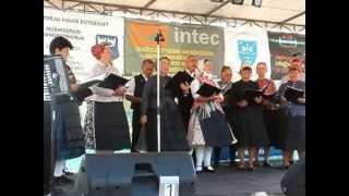 preview picture of video 'A Mözsi Német Nemzetiségi Kórus a JáKuGa Fesztiválon Jánossosmorján, 2013. július 13-án'