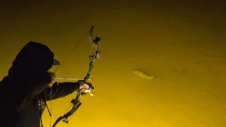 Insane BOWFISHING In Texas CARP MADNESS!!